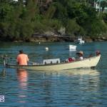 Bermuda Seagull Race June 2016 JM (33)