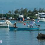 Bermuda Seagull Race June 2016 JM (35)