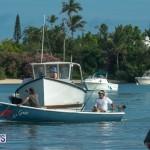Bermuda Seagull Race June 2016 JM (37)