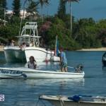 Bermuda Seagull Race June 2016 JM (40)