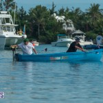 Bermuda Seagull Race June 2016 JM (42)