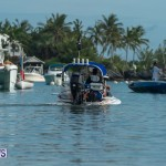 Bermuda Seagull Race June 2016 JM (45)