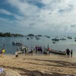 Bermuda Seagull Race June 2016 JM (77)