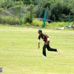 Cricket Western Stars-Southampton Rangers Bermuda June 29 2016 (1)