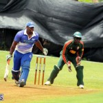 Cricket Western Stars-Southampton Rangers Bermuda June 29 2016 (17)