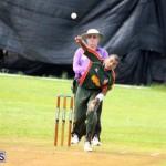 Cricket Western Stars-Southampton Rangers Bermuda June 29 2016 (2)