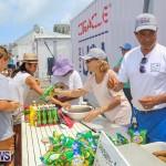 Foil Fest Americas Cup Bermuda, June 25 2016-158