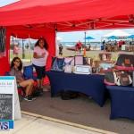 Foil Fest Americas Cup Bermuda, June 25 2016-174