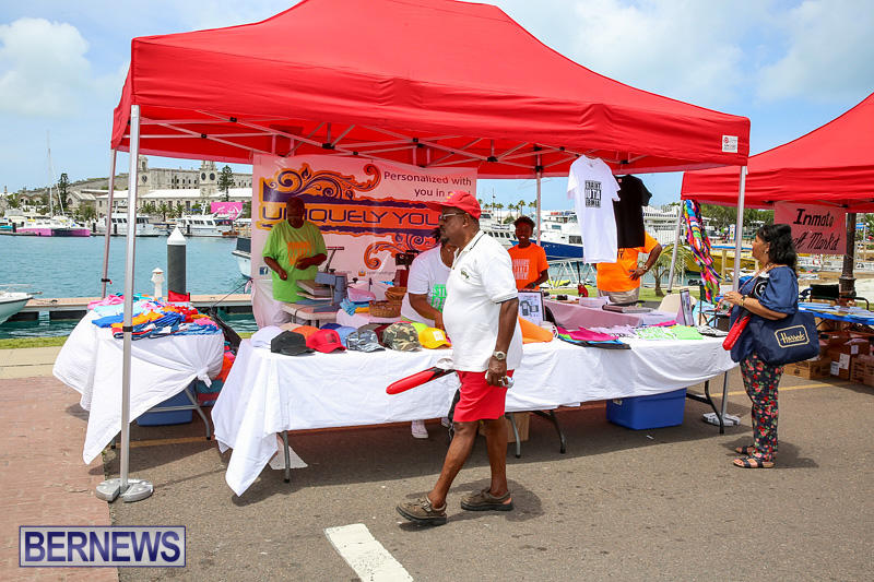 Foil-Fest-Americas-Cup-Bermuda-June-25-2016-181