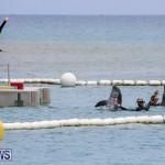 Foil Fest Americas Cup Bermuda, June 25 2016-208