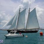 Foil Fest Americas Cup Bermuda, June 25 2016-280