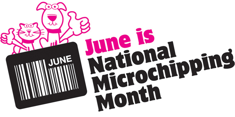 June Microchip Month Bermuda June 8 2016 1