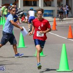 Tokio Millennium Re Triathlon Run Bermuda, June 12 2016-47