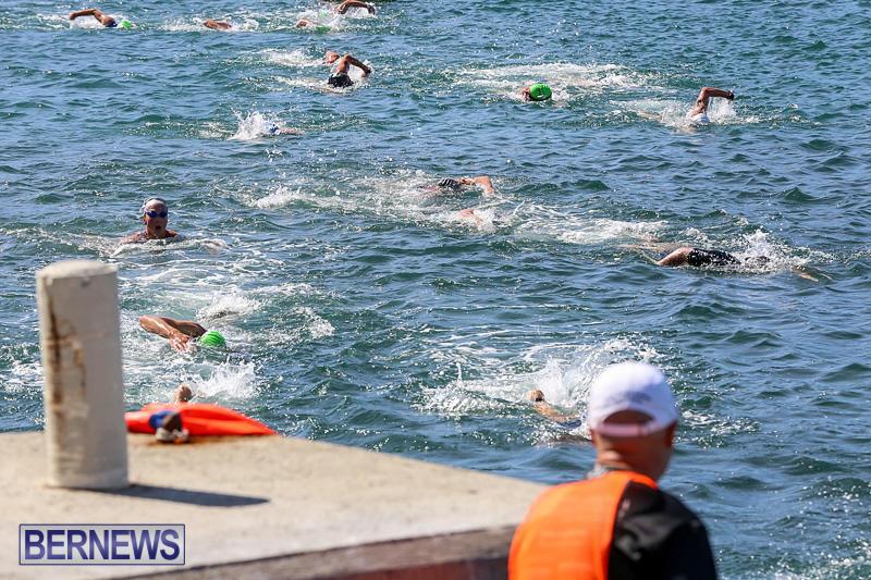 Tokio-Millennium-Re-Triathlon-Swim-Bermuda-June-12-2016-69