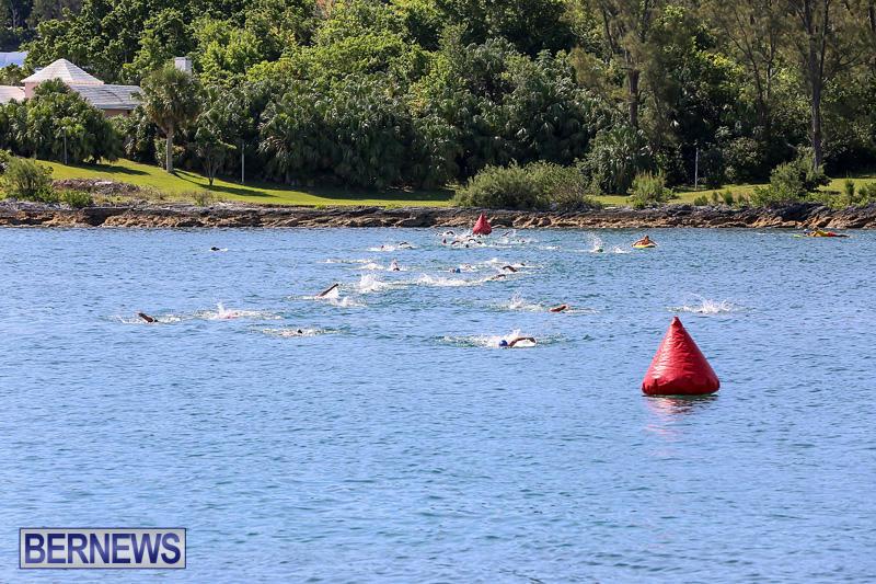 Tokio-Millennium-Re-Triathlon-Swim-Bermuda-June-12-2016-7