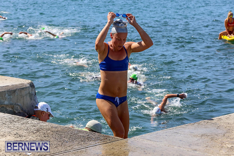 Tokio-Millennium-Re-Triathlon-Swim-Bermuda-June-12-2016-82