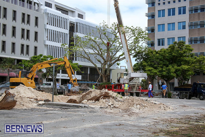Tree-Moving-At-City-Hall-Parking-Lot-Bermuda-June-11-2016-1
