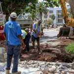 Tree Moving At City Hall Parking Lot Bermuda, June 11 2016-13