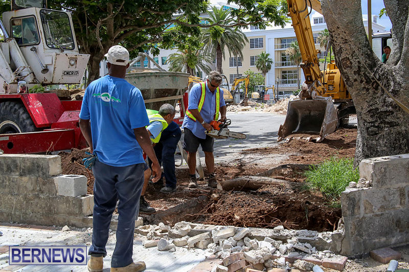 Tree-Moving-At-City-Hall-Parking-Lot-Bermuda-June-11-2016-13