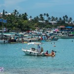 2016 Non Mariners Race Bermuda  (100)