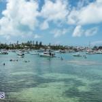 2016 Non Mariners Race Bermuda  (104)