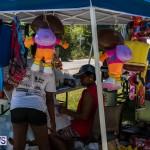 2016 Non Mariners Race Bermuda  (17)
