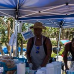 2016 Non Mariners Race Bermuda  (18)