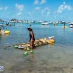 2016 Non Mariners Race Bermuda  (22)