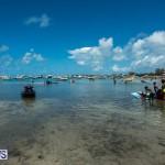 2016 Non Mariners Race Bermuda  (25)