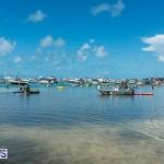 2016 Non Mariners Race Bermuda  (26)
