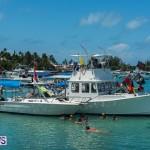 2016 Non Mariners Race Bermuda  (46)