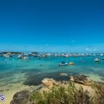 2016 Non Mariners Race Bermuda  (5)