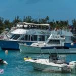 2016 Non Mariners Race Bermuda  (58)