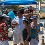 2016 Non Mariners Race Bermuda  (63)
