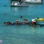 2016 Non Mariners Race Bermuda  (76)