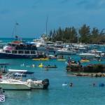 2016 Non Mariners Race Bermuda  (78)