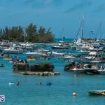 2016 Non Mariners Race Bermuda  (80)