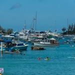2016 Non Mariners Race Bermuda  (92)