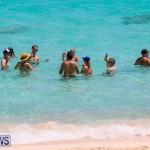 ACIB Canada Day BBQ Beach Party Bermuda, July 2 2016-97