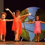 BBA's 5th annual showcase Bermuda July 3 2016 (6)