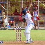 Cup Match Day 1 Bermuda, July 28 2016-157