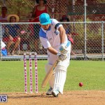 Cup Match Day 1 Bermuda, July 28 2016-79