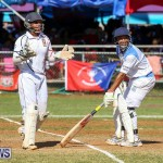 Cup Match Day 2 Bermuda, July 29 2016-105