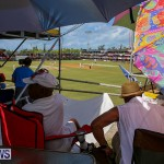 Cup Match Day 2 Bermuda, July 29 2016-5