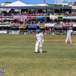 Cup Match Day 2 Bermuda, July 29 2016-61