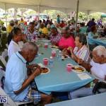 Matilda Smith Family & Friends Fun Day Bermuda, July 14 2016-37