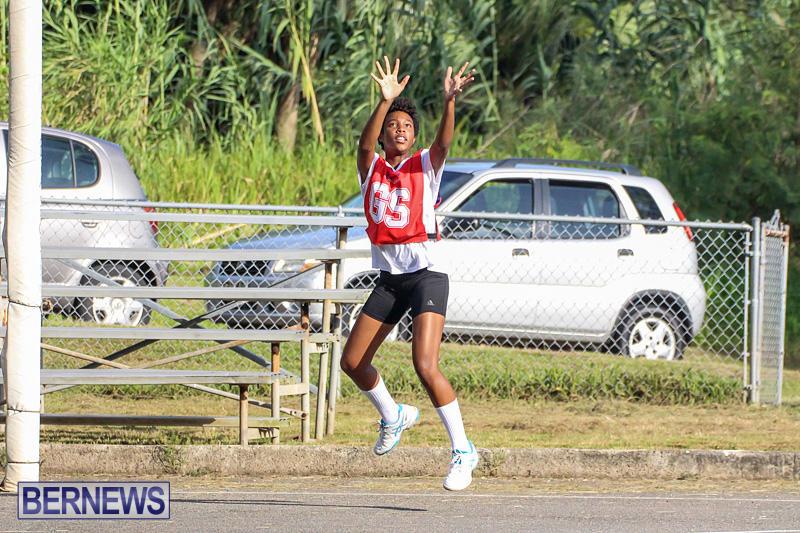 Netball-Bermuda-July-2016-15