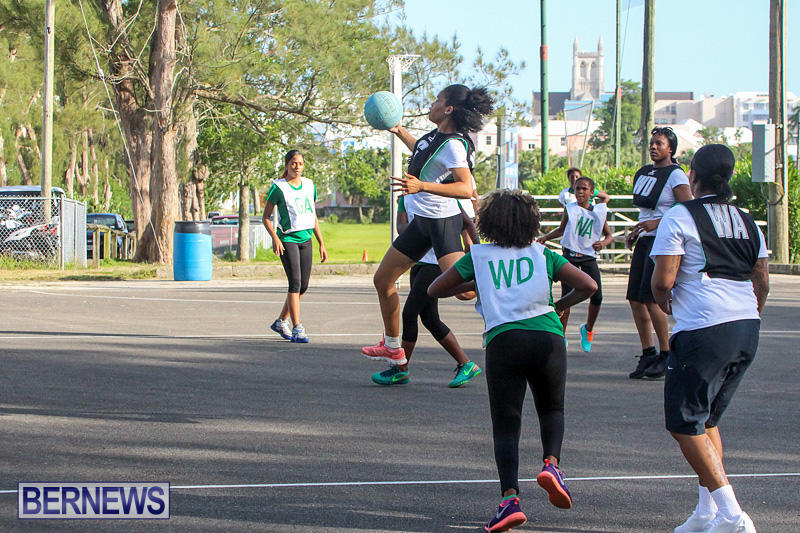 Netball-Bermuda-July-2016-34