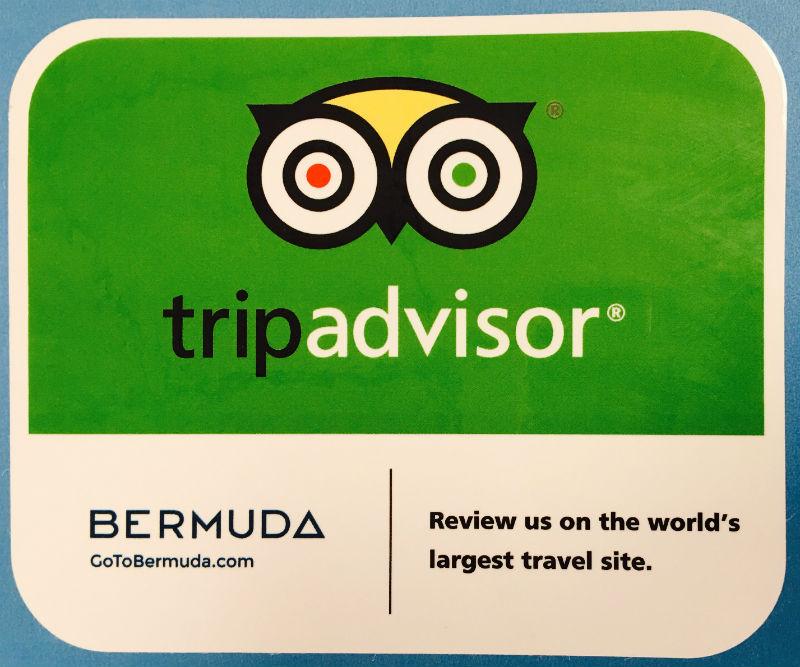 bermuda-trip-advisor