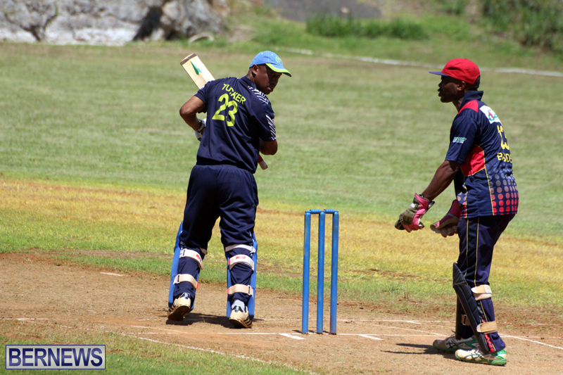 Cricket-Bermuda-August-2016-151
